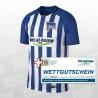 Hertha BSC SS Home Jersey 2017/2018