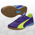 evoSPEED 4.3 IT