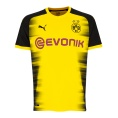 BVB International Jersey 2017/2018