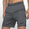 Dry Training 5.0 Shorts