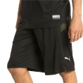 Energy Knit-Mesh 11 Inch Short