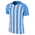 Striped Division III SS Jersey