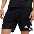 Tierro Goalkeeper Short