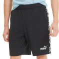 Amplified Training Shorts